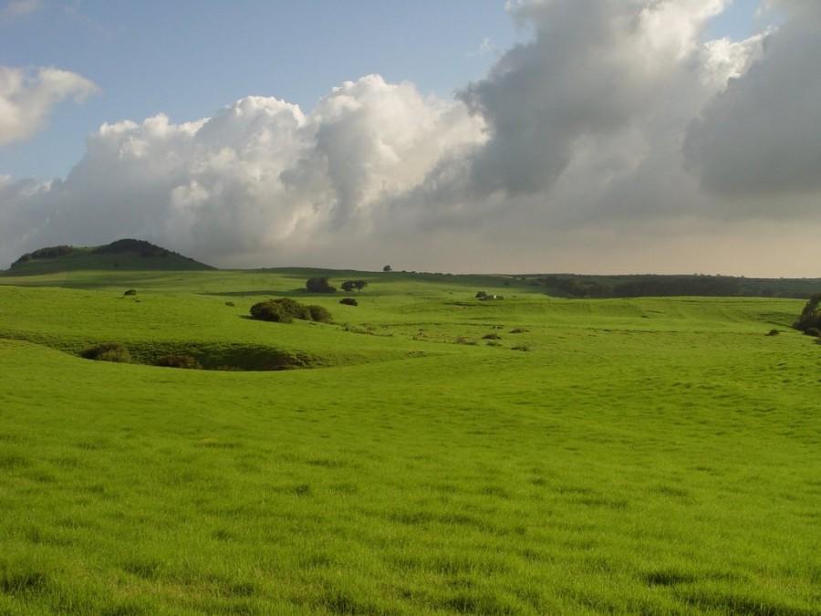 Green by riktorsashen