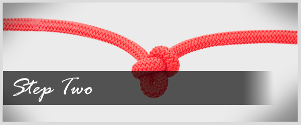 Link Creation Rope