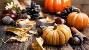 holiday-thanksgiving-pumpkins